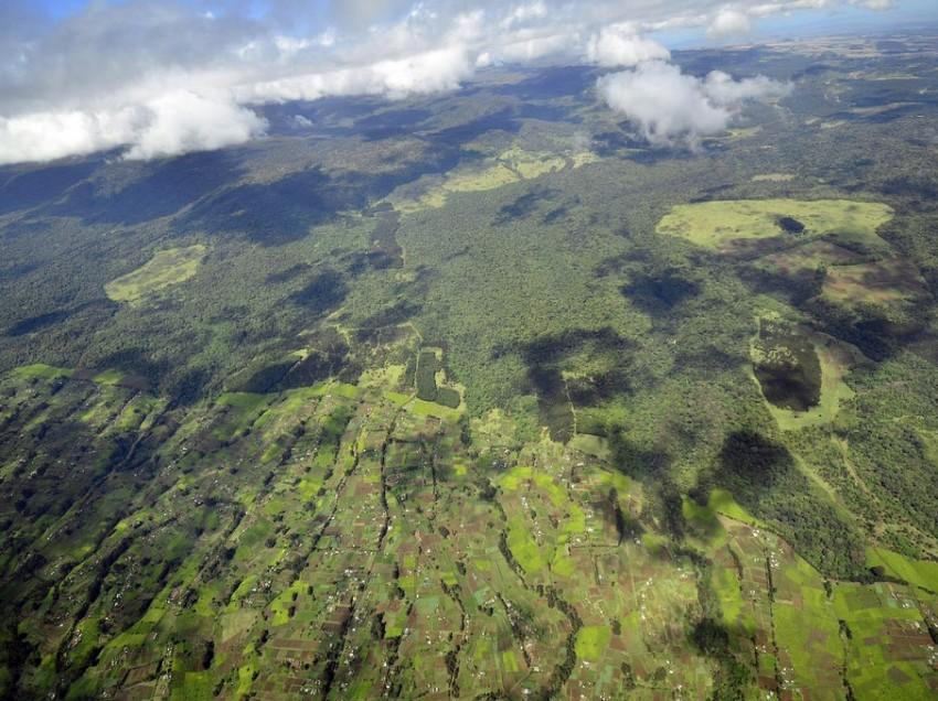 Kenia: Handel mit Co2-Zertifikaten umweltfreundlich?