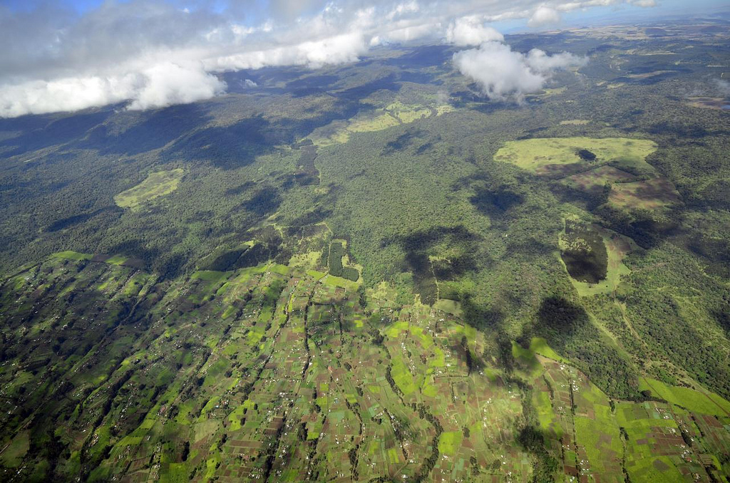 View of farmland and forest in rural Kenya, in the north of the country. Photo CC BY-SA 2.0 by Neil Palmer (CIAT)