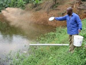 Small-scale farmer in Cameroon, Copyright: Randall Brummett, 2004, The World Fish Center