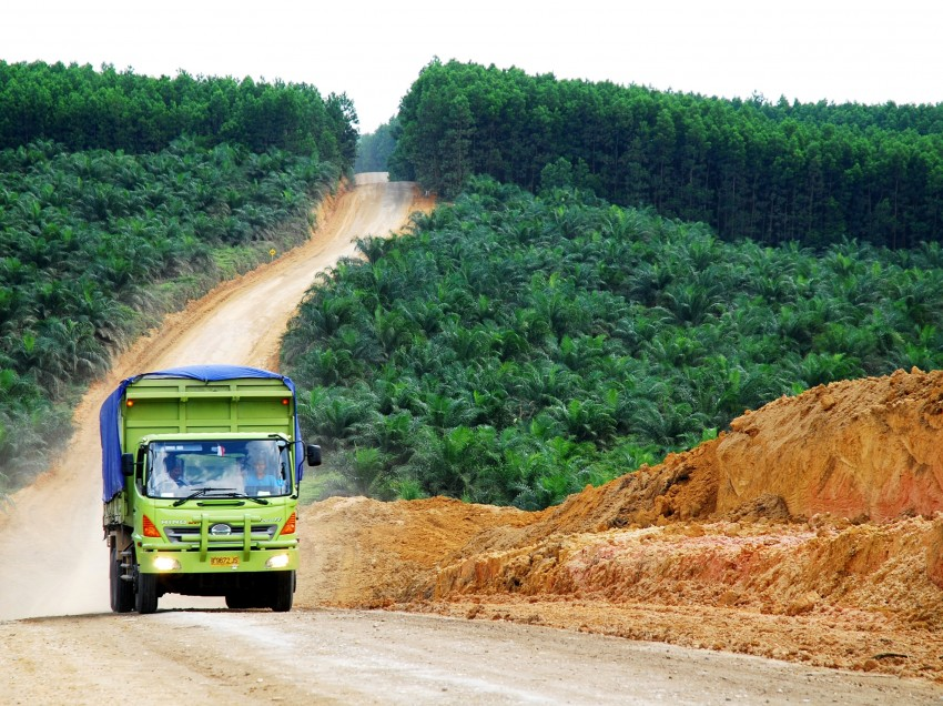 "Farmland – the New ""Blood Diamonds"" in Sierra Leone?"