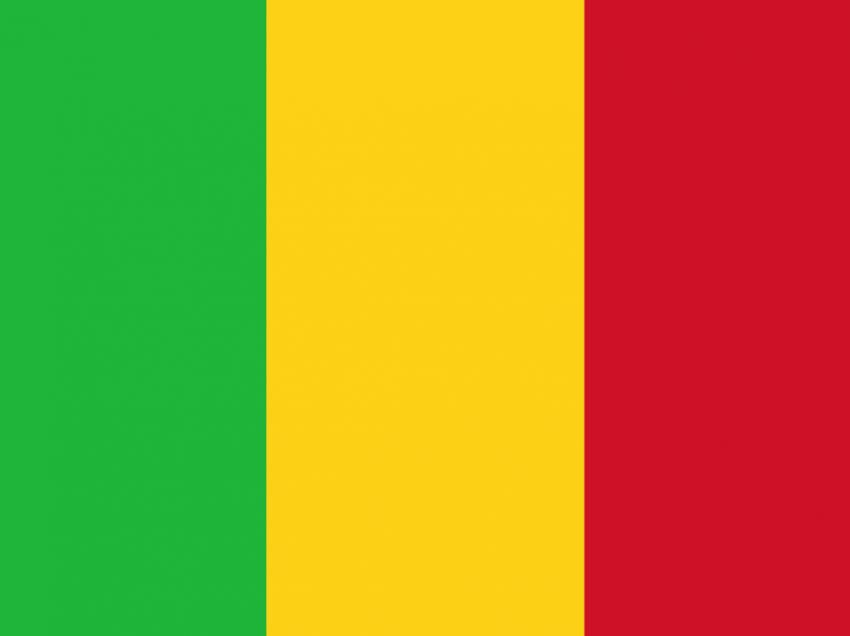 """""""Pour l'Afrique et pour toi"""": Tag der Entscheidung in Mali"""
