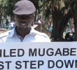 The Abducted Zimbabwean Activist